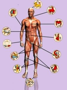 Medical Astrology Body Parts